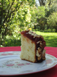 Italian Tarts (sponge cakes rolled with jam and chopped nuts; filled ...